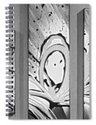 Face In Space B G Spiral Notebook