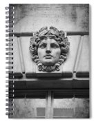 Face In Stone Spiral Notebook