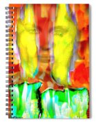 Face In The Flames Spiral Notebook
