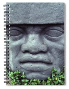 Face On Bali Spiral Notebook