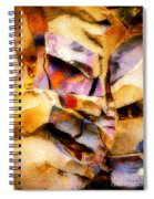 Faces In Stone Spiral Notebook