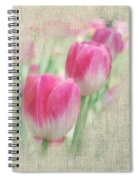 Faded Floral 8 Spiral Notebook