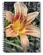 Fading Memory Spiral Notebook