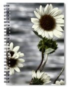 Fading Sunflowers Spiral Notebook