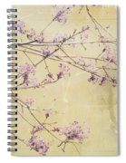 Fading Spiral Notebook