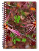 Fairy Duster Spiral Notebook