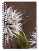 Fairy Flower Spiral Notebook