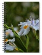 Fairy Iris 2 Spiral Notebook