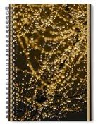 Fairy Lanterns Spiral Notebook