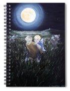 Fairy Races At Tara Spiral Notebook