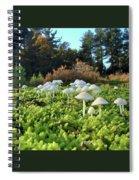 Fairytail Mushrooms Spiral Notebook