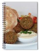 Falafel Balls Spiral Notebook