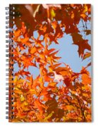 Fall Art Prints Orange Autumn Leaves Baslee Troutman Spiral Notebook