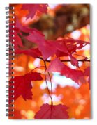 Fall Art Red Autumn Leaves Orange Fall Trees Baslee Troutman Spiral Notebook