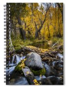 Fall At Mcgee Creek Spiral Notebook
