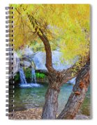 Fall At Murray Falls I Spiral Notebook