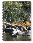 Fall At The Creek Spiral Notebook