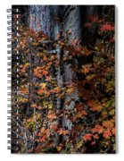 Fall Beauty Spiral Notebook