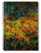 Fall Begins Spiral Notebook