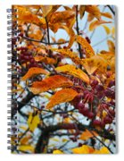 Fall Berries Spiral Notebook