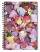 Fall Carpet Spiral Notebook