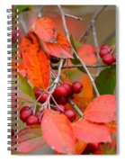 Fall Color 1 Spiral Notebook