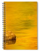Fall Color Abstract Spiral Notebook
