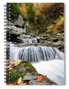 Fall Color Bash Spiral Notebook