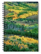 Fall Color In The Eastern Sierras California Spiral Notebook