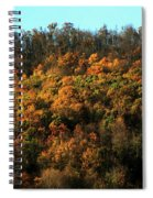 Fall Colors 16 Spiral Notebook
