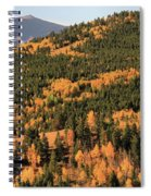Fall Colors At Rocky Mountain National Park Spiral Notebook