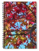 Fall Colors I Spiral Notebook