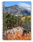 Fall Colors In Rocky Mountain National Park Spiral Notebook