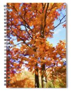 Fall Colors Looking Awesome Spiral Notebook