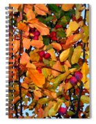 Fall Crab Apples Spiral Notebook