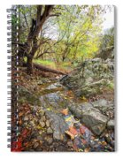 Fall Creek View Spiral Notebook