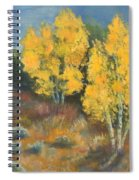 Fall Delight Spiral Notebook