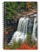 Fall Falls 2 Spiral Notebook