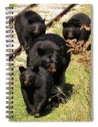 Fall Farewell Spiral Notebook