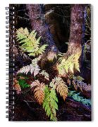 Fall Ferns Spiral Notebook