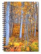Fall Fiesta Spiral Notebook
