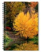 Fall Fireworks Spiral Notebook