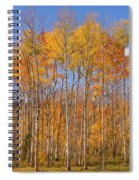 Fall Foliage Color Vertical Image Spiral Notebook
