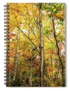 Fall Foliage On The Hike Up Mount Monadnock New Hampshire Spiral Notebook