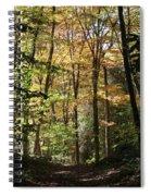 Fall Forest 2 Spiral Notebook