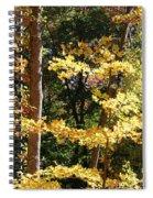 Fall Forest 3 Spiral Notebook