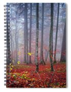 Fall Forest In Fog Spiral Notebook