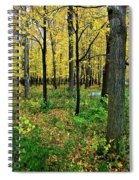 Fall Fusion Spiral Notebook