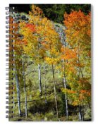 Fall In Colorado Spiral Notebook