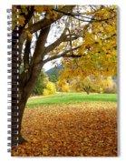 Fall In Kaloya Park 8 Spiral Notebook